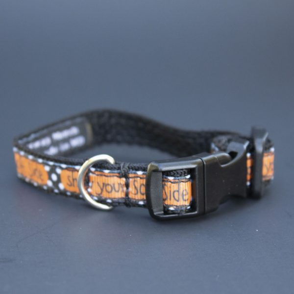 Small Dog Collar Show Your Soft Side
